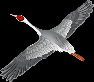 A crane flying