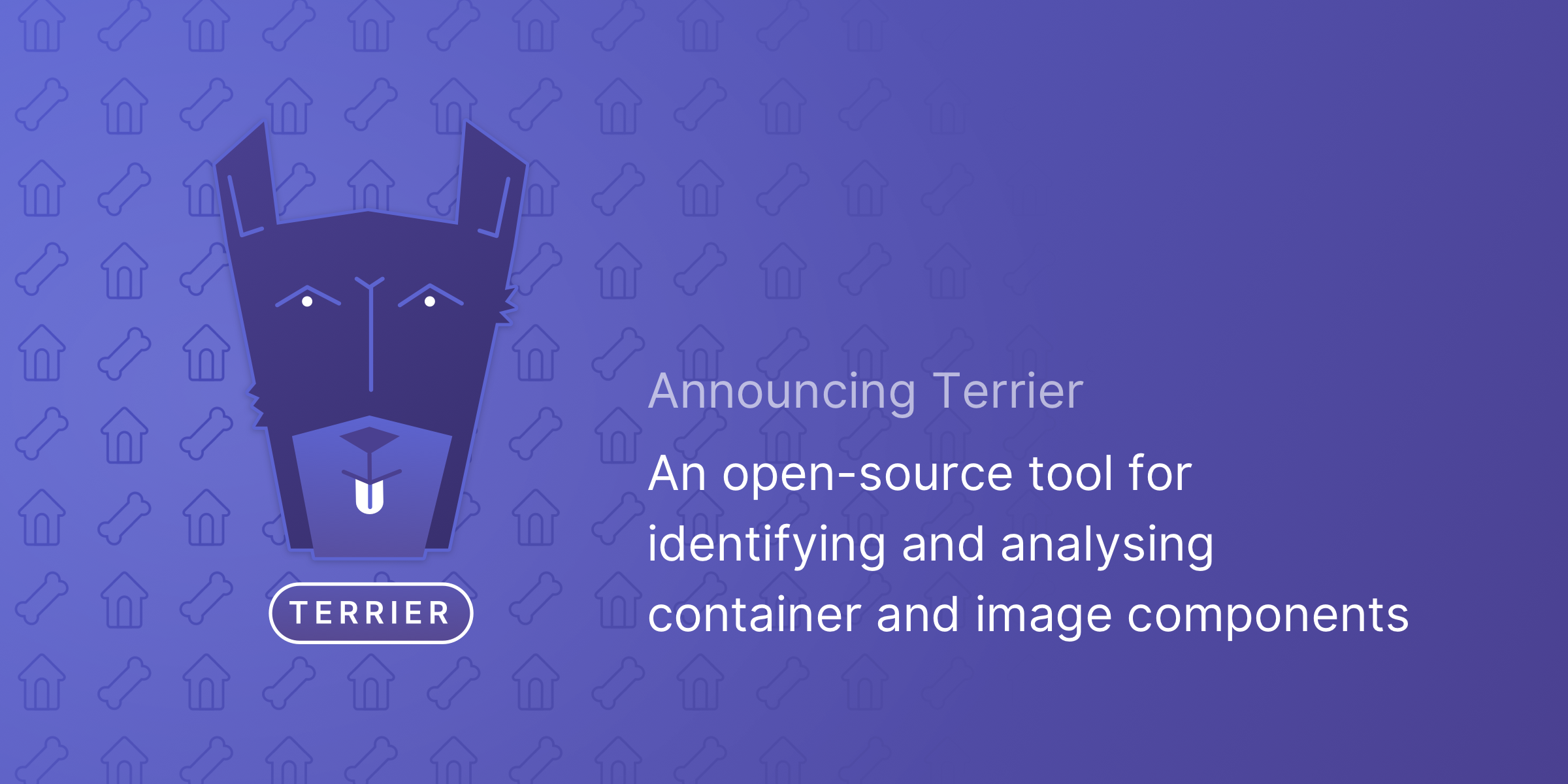 Announcing Terrier: An open-source tool for identifying and analysing container and image components