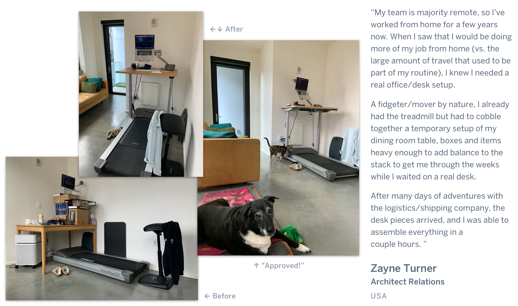 "A before photo of a standing desk made up boxes, followed by an after photo of a clean mechanical standing desk above a treadmill, with a dog and cat looking on. ""My team is majority remote, so I've worked from home for a few years now. When I saw that I would be doing more of my job from home (vs. the large amount of travel that used to be part of my routine), I knew I needed a real office/desk setup. A fidgeter/mover by nature, I already had the treadmill but had to cobble together a temporary setup of my dining room table, boxes and items heavy enough to add balance to the stack to get me through the weeks while I waited on a real desk. After many days of adventures with the logistics/shipping company, the desk pieces arrived, and I was able to assemble everything in a